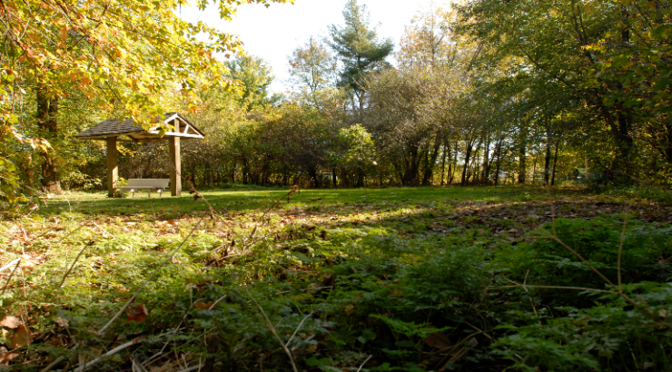 Revitalisation du parc du Ruisseau-Bernard – Phase 1 des travaux