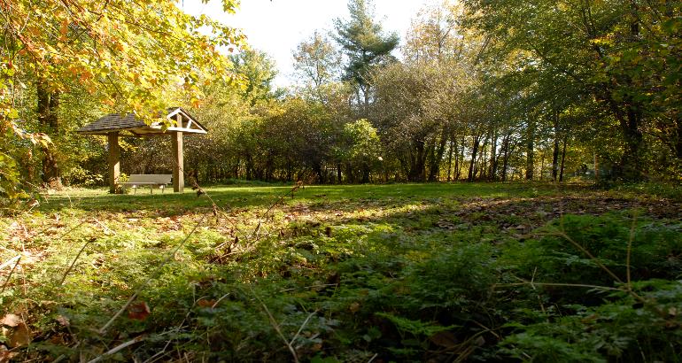 Revitalisation du parc du Ruisseau-Bernard